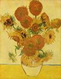 Vincent Van Gogh, Natura morta con girasoli (1888)